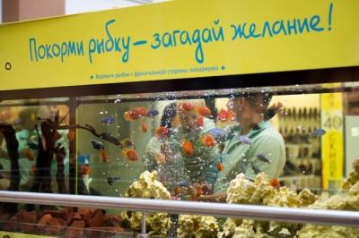 Автомат-аквариум